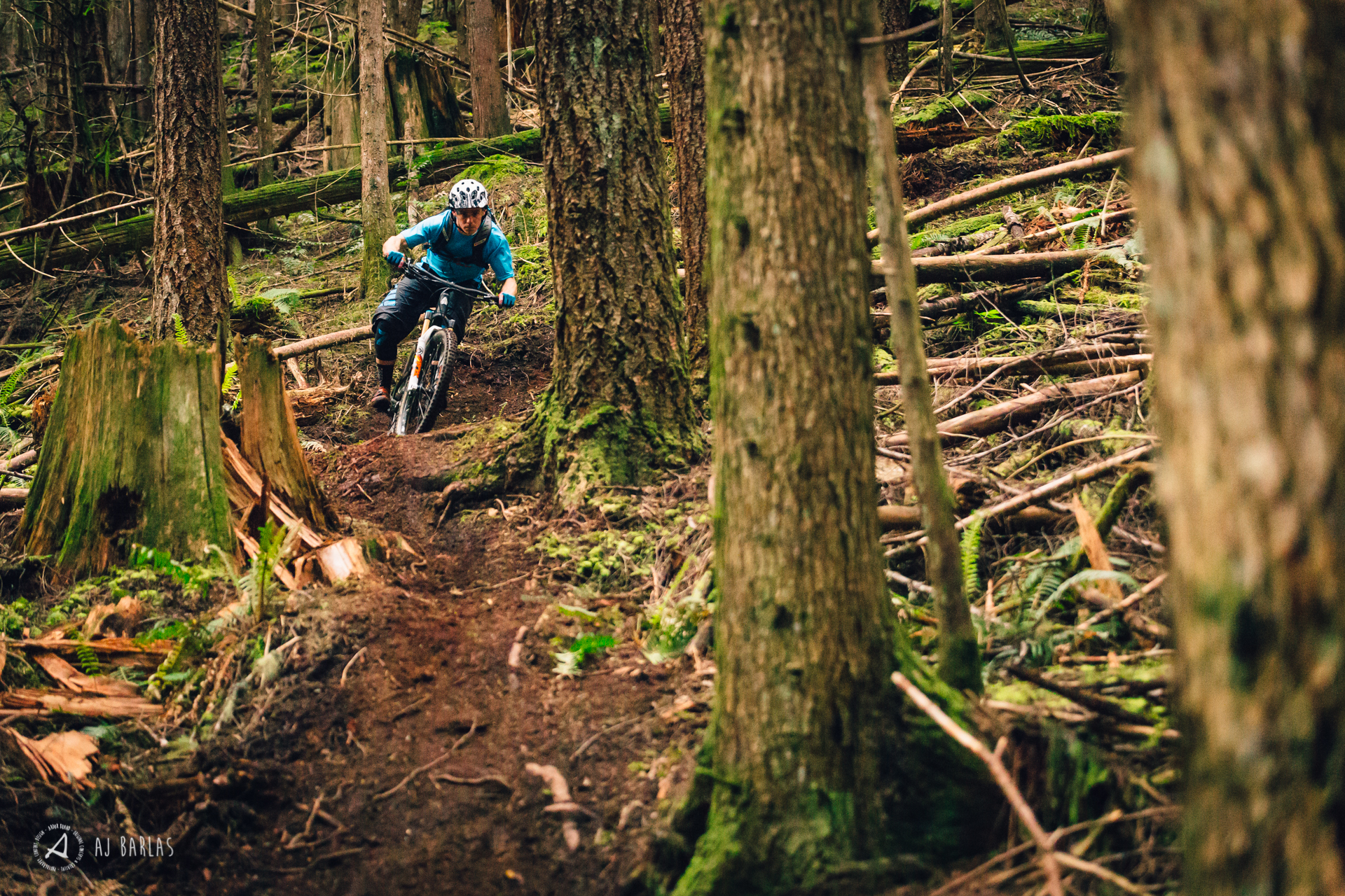 Davis railing some Squamish loam